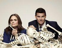 Bones Die Knochenjägerin Staffel 13
