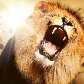 Die Höhle der Löwen 2017: Start im TV - Sendetermine & Jury