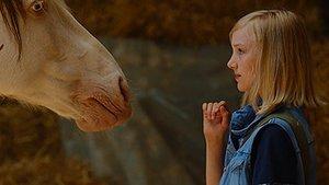 """In unserer exklusiven Szene tauft """"Wendy"""" ihr neues Pferd"""
