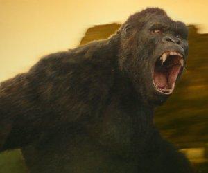 Kong Skull Island: Stream & DVD Release - Wann startet der Film im Heimkino?