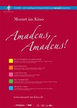 Amadeus, Amadeus: Die Zauberflöte Poster