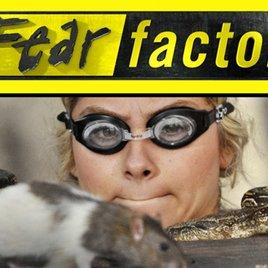 """""""Fear Factor"""": Erster Trailer zu MTVs Reality-Ekel-Show"""