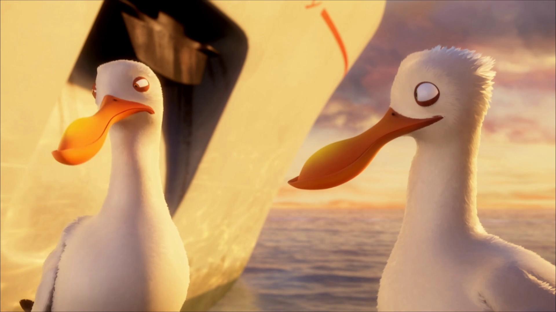 Überflieger: Kleine Vögel - großes Geklapper Trailer
