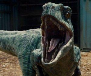 """""""Jurassic World 2"""": Neues Set-Foto kündigt große News an"""