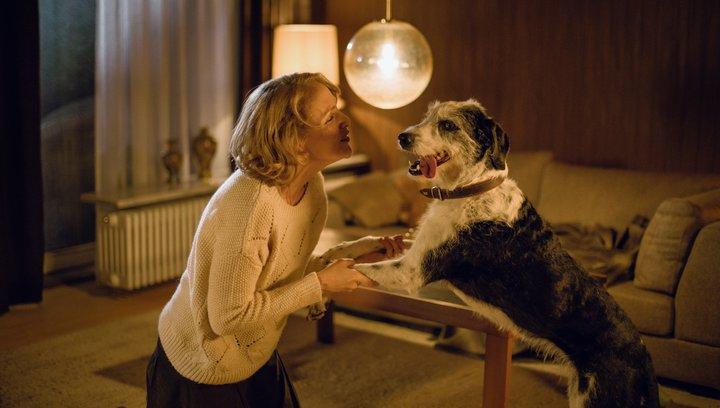 Der Hund begraben - Trailer Deutsch Poster