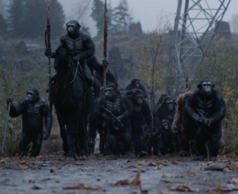 """Szenenbild aus """"Planet der Affen: Survival"""" © Twentieth Century Fox"""
