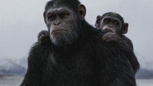 """""""Planet der Affen: Survival""""-Kritik: Herz der Finsternis"""