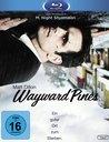 Wayward Pines - Ein guter Ort zum Sterben. Poster