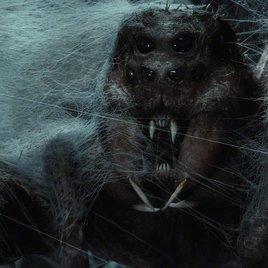 Schocktherapie: Die 8 schlimmsten Horrorfilme für Menschen mit Spinnenangst