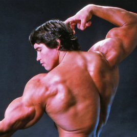 Mr. Universum spielt bald Arnold Schwarzenegger