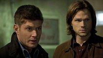 """""""Supernatural"""" Staffel 16 – wird die Mystery-Serie fortgesetzt?"""