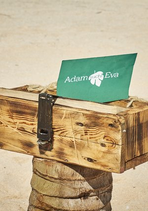 Adam Sucht Eva Stream Kostenlos