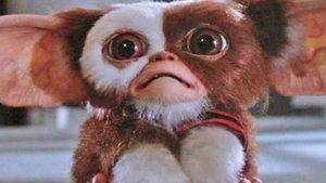 """Fans reagieren begeistert auf neuen """"Gremlins""""-Fanfilm"""