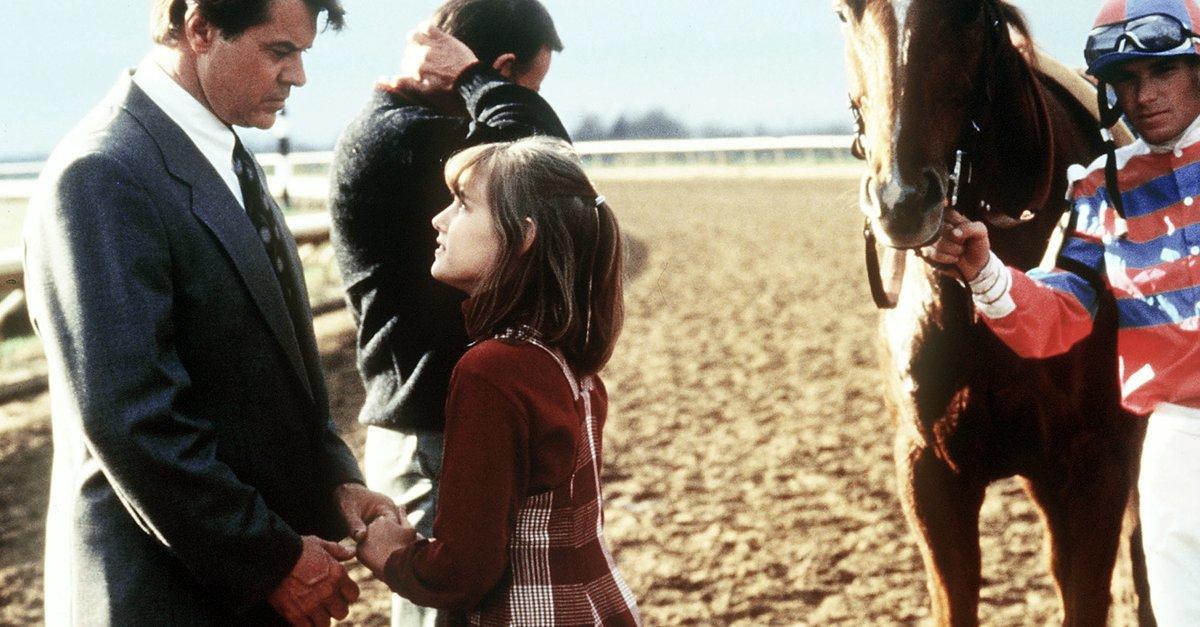 Ein Pferd Für Danny Stream