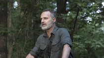 """""""The Walking Dead"""" Staffel 12: Wie steht es um die Fortsetzung?"""