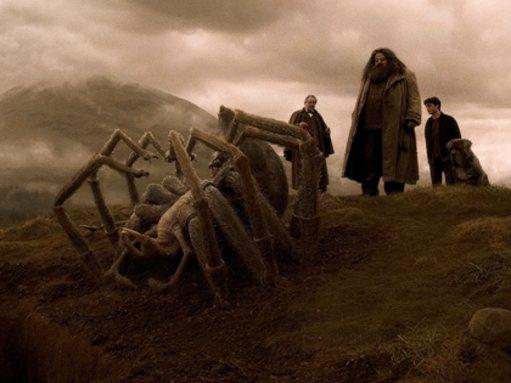 8 Filme, die Menschen mit Spinnenangst nicht ertragen
