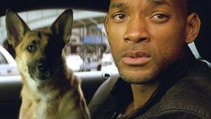 """""""I Am Legend""""-Regisseur wünschte sich heute, er hätte einen völlig anderen Film gemacht"""