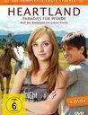 Heartland - Die komplette erste Staffel (4 Discs) Poster