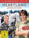 Heartland - Paradies für Pferde: Die zweite Staffel, Teil 2 (3 Discs) Poster