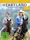 Heartland - Paradies für Pferde, Staffel 6.1 (3 Discs) Poster