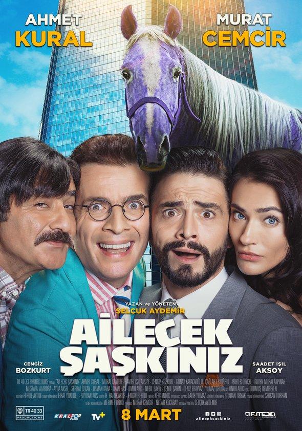 Ailecek Saskiniz Poster