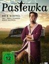 Pastewka - Die 8. Staffel Poster