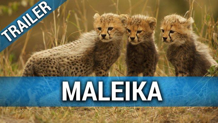 Maleika - Trailer Poster