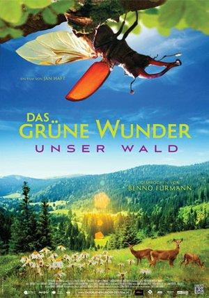 Das grüne Wunder - Unser Wald Poster