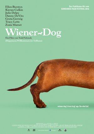 Wiener Dog Poster