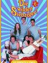 Die wilden Siebziger - Die komplette 6. Staffel (5 DVDs) Poster