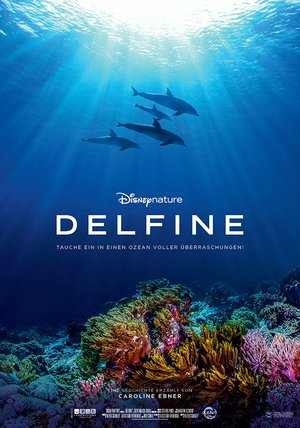 Delfine Poster