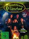 Grusel, Grauen, Gänsehaut - Staffel 1 Poster