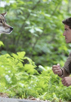 Der Ranger Paradies Heimat Wolfsspuren