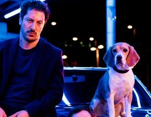 Dogs Of Berlin Staffel 2 Wann Und Wie Geht Es Weiter Kinode