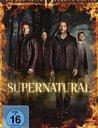 Supernatural - Die komplette zwölfte Staffel Poster