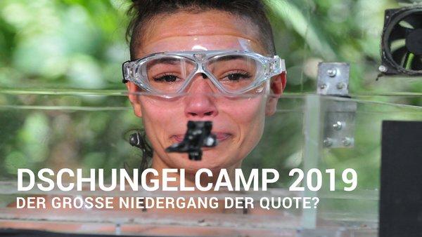 Dschungelcamp 2019 Ganze Folgen 38