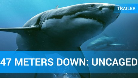 47 Meters Down: Uncaged – Trailer Englisch Poster