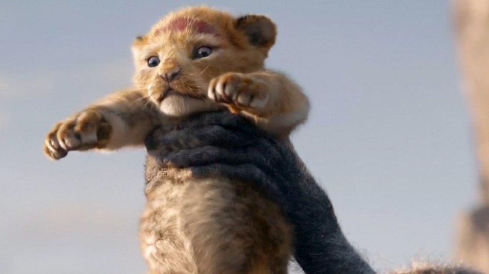 kino lion