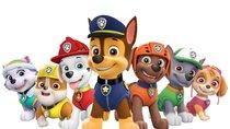 """""""Paw Patrol""""-Namen: So heißen die Helfer auf vier Pfoten"""