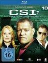 CSI: Crime Scene Investigation - Season 10 (4 Discs) Poster
