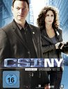 CSI: NY - Season 6.1 (3 Discs) Poster