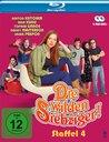 Die wilden Siebziger - Staffel 4 (2 Discs) Poster