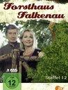 Forsthaus Falkenau - Staffel 12 (3 Discs) Poster