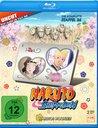 Naruto Shippuden - Die komplette Staffel 26 Poster