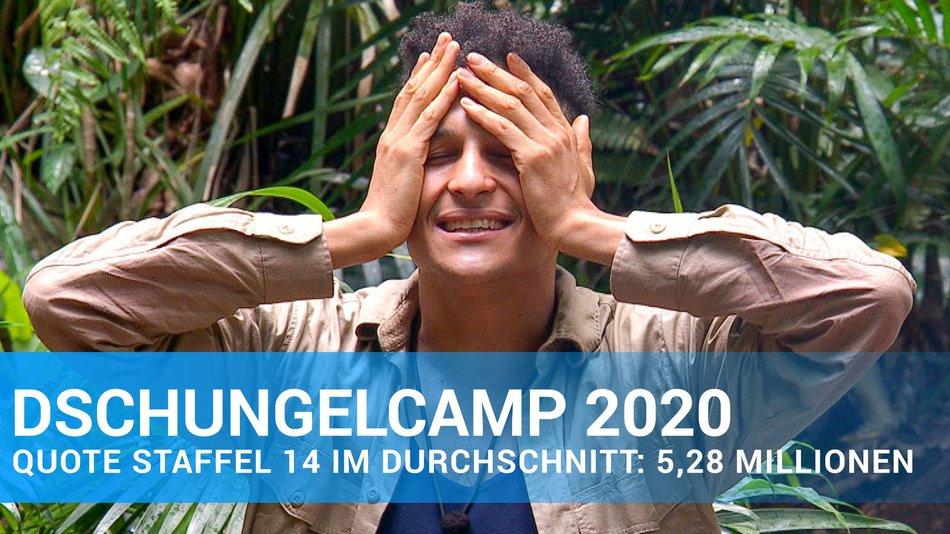 Dschungelcamp Quoten