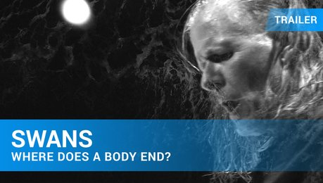 Swans - Where Does A Body End? - Trailer Deutsch Poster