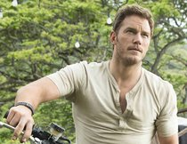Chris Pratt als Indiana Jones: Neues Video erfüllt Fan-Wunsch